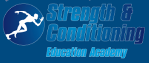 strengthandconditioningeducation - bodyweight solution