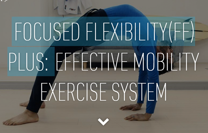 GMB Fitness - Focused Flexibility Plus