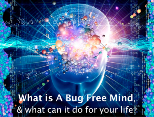 Creating a Bug Free Mind – Andy Shaw