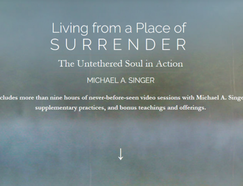 Michael Singer – Living From a Place of Surrender